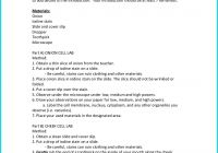 Awesome Science Lab Report Template Best Of Ion and Cheek Cell Lab School Pinterest