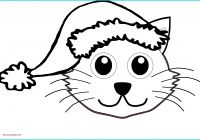 Blank Cat In the Hat Template Best Of Cat In Drawing at Getdrawings